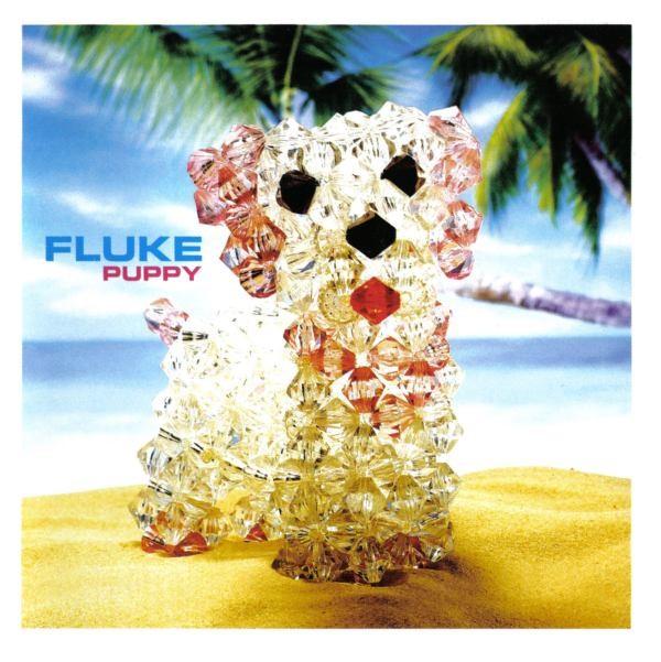 Fluke - Puppy