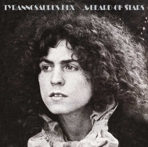 Tyrannosaurus Rex - A Beard of Stars (Deluxe Edition) - 180 gr. Vinyl