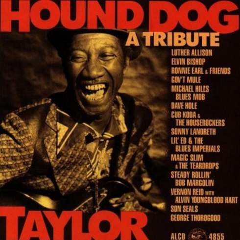 Various Artists - Hound Dog Taylor - A Tribute