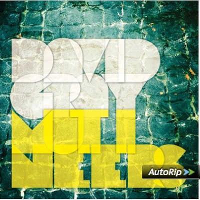 David Gray - Mutineers/Vinyl