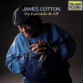 James Cotton - Fire Down Under The Hill (2000)