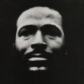 Marvin Gaye - Vulnerable (1997)