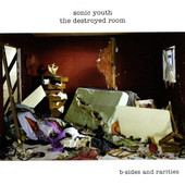 Sonic Youth - Destroyed Room: B-Sides And Rarities - Vinyl
