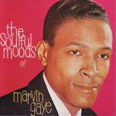 Marvin Gaye - Soulful Moods Of Marvin Gaye - 180 gr. Vinyl