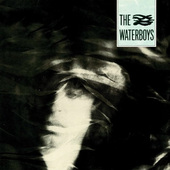 Waterboys - Waterboys - 180 gr. Vinyl