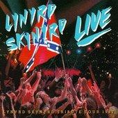 Lynyrd Skynyrd - Southern By the Grace of God/Live