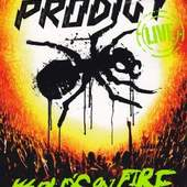 Prodigy - Live - World's On Fire (CD+DVD Ltd Edition Digipack)