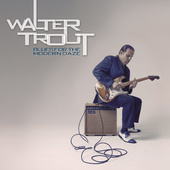 Walter Trout - Blues For The Modern Daze (2012) - Vinyl