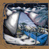 Jonathan Wilson - Gentle Spirit - 180 gr. Vinyl