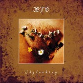 XTC - Skylarking (Remastered 2014)