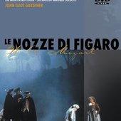 Mozart, Wolfgang Amadeus - MOZART Le nozze di Figaro Gardiner DVD