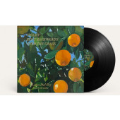 Lana Del Rey - Violet Bent Backwards Over The Grass - Audiobook (2020) - Vinyl