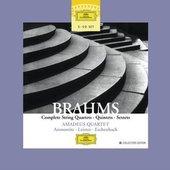 Brahms, Johannes - BRAHMS Chamber Music Amadeus Quartet