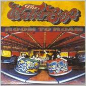 Waterboys - Room To Roam - 180 gr. Vinyl