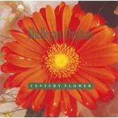 Shelleyan Orphan - Century Flower