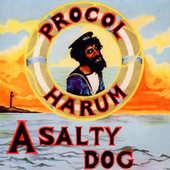 Procol Harum - A Salty Dog (2015)