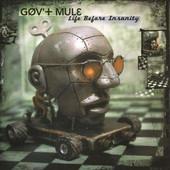 Gov't Mule - Life Before Insanity - 180 gr. Vinyl