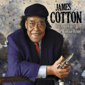 James Cotton - How Long Can A Fool Go Wrong (2011)