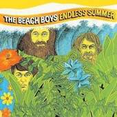 Beach Boys - Endless Summer - 180 gr. Vinyl