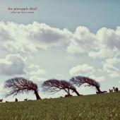 Pineapple Thief - What We Have Sown (Edice 2019) - Vinyl