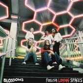 Blossoms - Foolish Loving Spaces (2020) - Vinyl