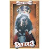 Film/Rodinný - Baron (Videokazeta)