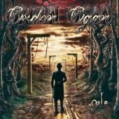 Orden Ogan - Vale (Limited Green Vinyl, Edice 2018) - Vinyl