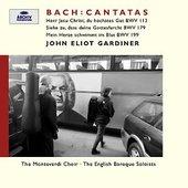 Gardiner, John Eliot - BACH Cantatas BWV 199,179,113 Gardiner