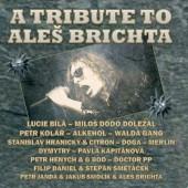 Aleš Brichta =Tribute= - AB 50 - A Tribute to Aleš Brichta (Reedice 2014)