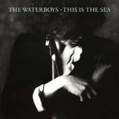 Waterboys - This Is The Sea - 180 gr. Vinyl