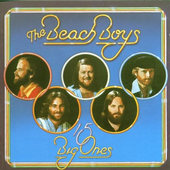 Beach Boys - 15 Big Ones / Love You