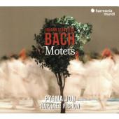 Johann Sebastian Bach - Moteta (2020)