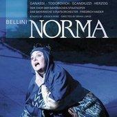 Bellini, Vincenzo - BELLINI Norma Haider DVD-VIDEO