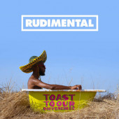 Rudimental - Toast To Our Differences (2019) - Vinyl