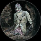 Cannibal Corpse - Vile (Picture Disc) - 180 gr. Vinyl