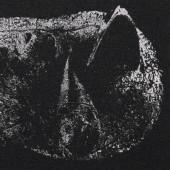 Demon Head - Viscera (Limited Edition, 2021) - Vinyl