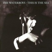 Waterboys - This Is The Sea (Collector's Edition 2017)