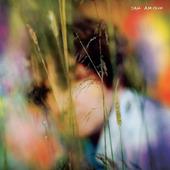 Sam Amidon - Sam Amidon (2020) - Vinyl