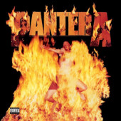 Pantera - Reinventing The Steel (Limited Edition 2020) - 180 gr. Vinyl