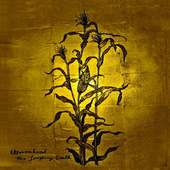 Woven Hand - Laughing Stalk/Digipack