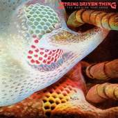 String Driven Thing - The Machine That Cried
