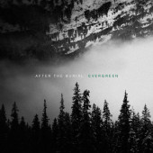 After The Burial - Evergreen (2019) – Vinyl