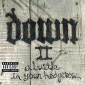 Down - Down II: A Bustle In Your Hedgerow... - 180 gr. Vinyl