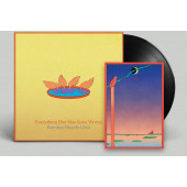 Bombay Bicycle Club - Everything Else Has Gone Wrong (2020) - Vinyl