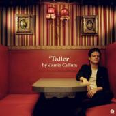 Jamie Cullum - Taller (2019) - Vinyl