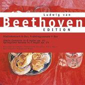 Ludwig van Beethoven - Violinkonzert / Frühlingssonate